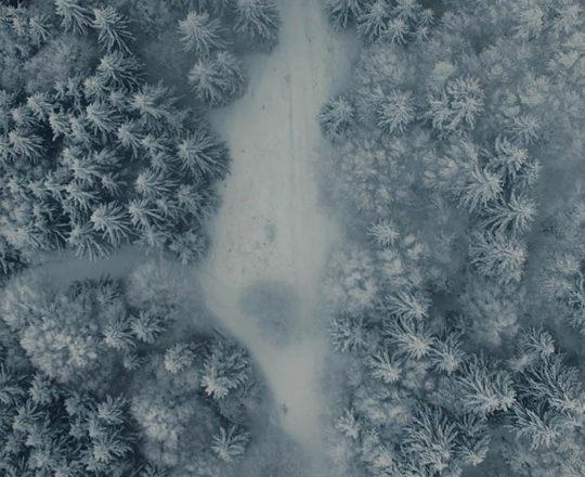 Frozen world (Mont Revard - 73) [2019]